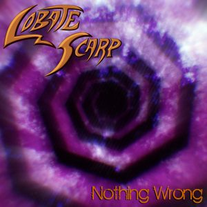Nothing Wrong Cover